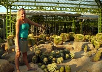 Ema in the cactus garden