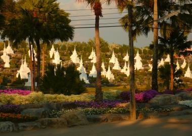 Pagoda landscape