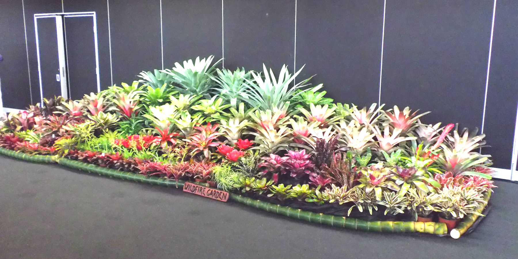 Wildfire Garden Sunny Broms Conference Display